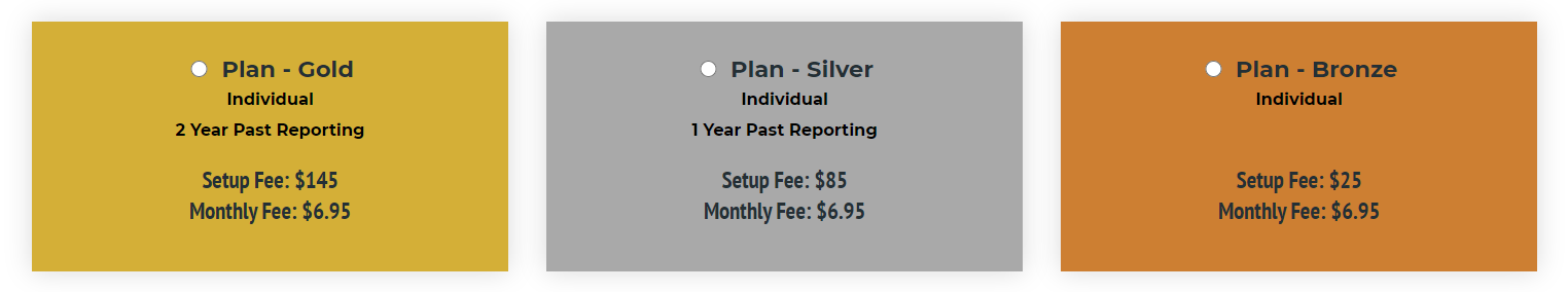 Rent Reporting for an Individual